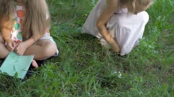 Mladá žena v práci jako pedagog čtení knihy pro chlapce a dívky v parku