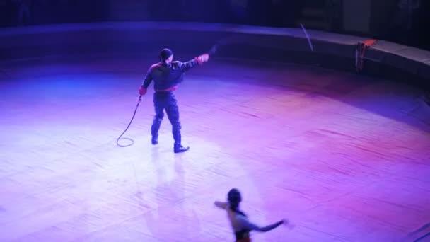 Brillante Vorstellung im Zirkus