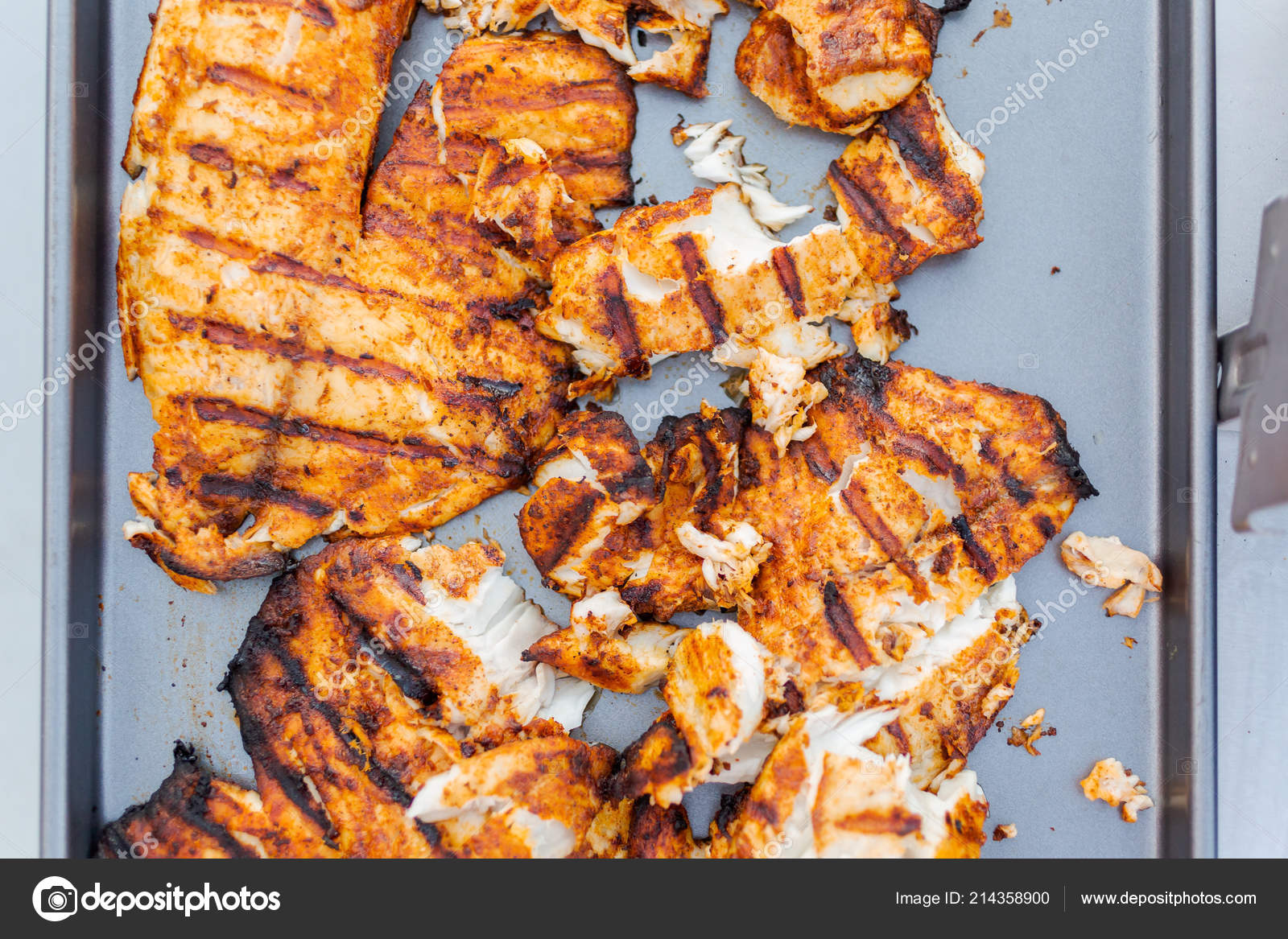 Grilling Cod Fish Tacos Outdoor Gas Grill Stock Photo