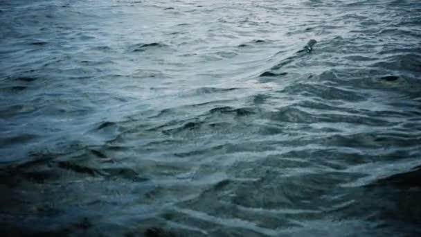 Zpomalené vlny oceánu