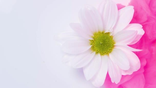 bílá květina a růžová inkoust mrak ve vodě