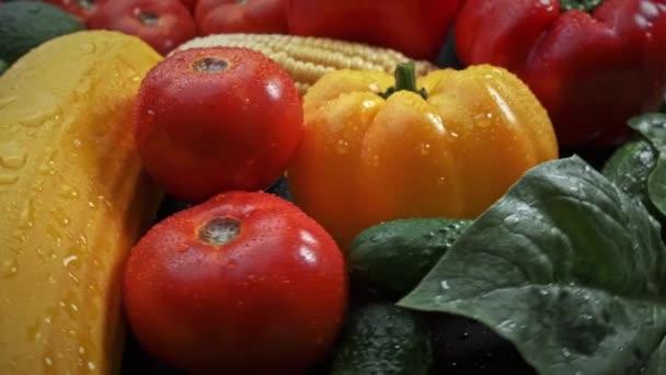Sokszínű friss zöldségek: cukkini, paradicsom, uborka, harangpaprika, kukorica, vízcseppekkel. Forgási háttér