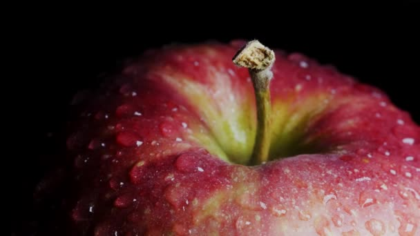 Close-up of a red-green apple with water droplets macro shot. The apple rotates around its axis on a black background