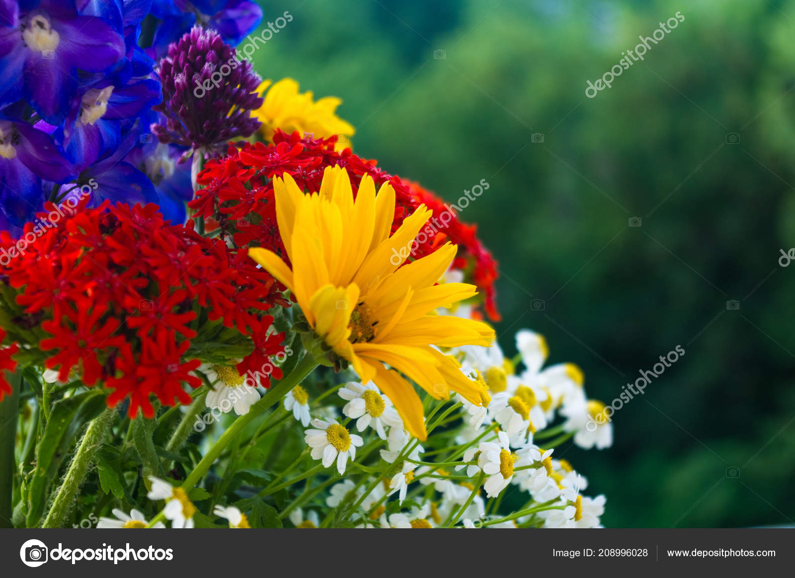 Colorful Bouquet Bright Spring Flowers Various Types Close Stock