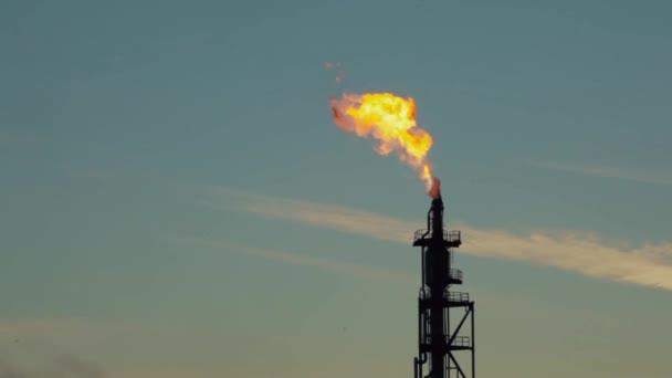 Fuoco il chiarore dello stack. Industria petrolifera e del gas raffineria pianta o petrolchimici sul fondo del cielo al tramonto, fabbrica con serata