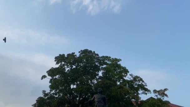 Ptáci letící nad stromem při západu slunce.