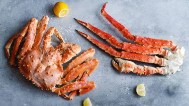 Big alaskan crab with lemon slices on concrete background