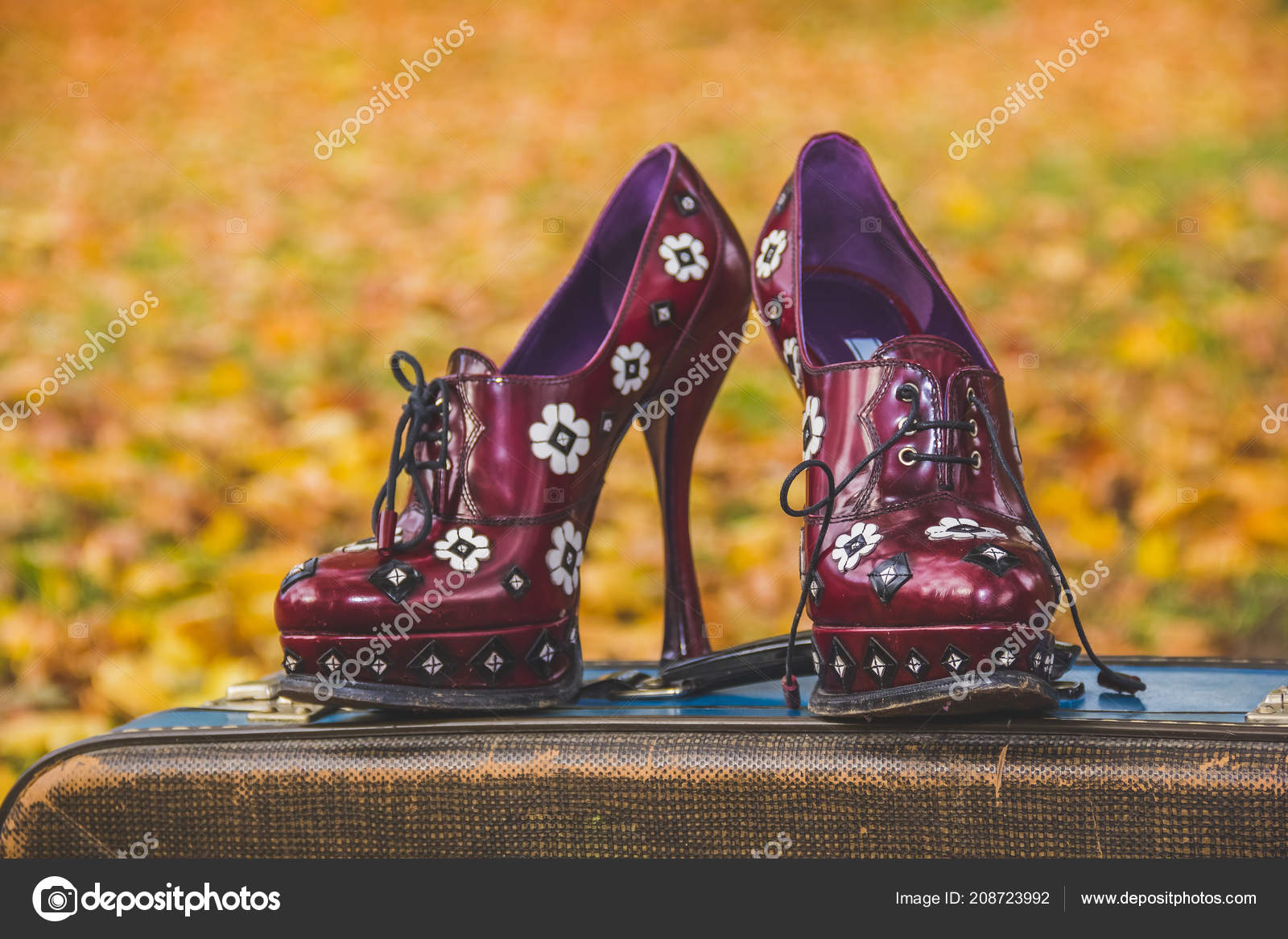 6b1231cd57dee Sexy female stiletto shoes isolated on fall blurred background.high ...