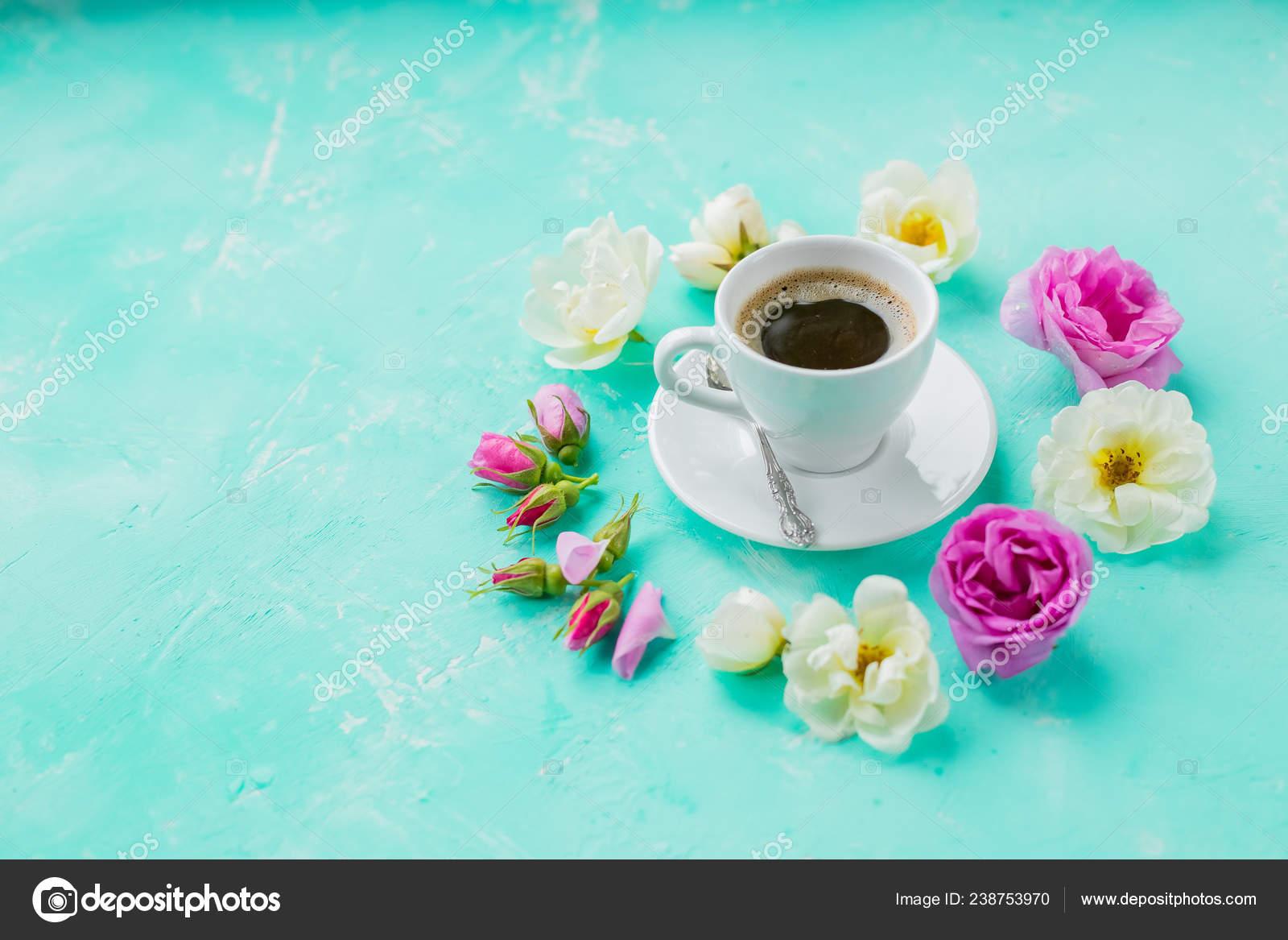 Coffee cozy/'s Cup cozy/'s Sky Blue Cozy/'s