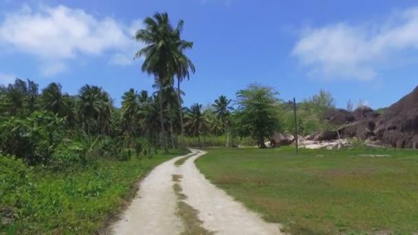 Chůze přes palmy na exotický ostrov, La Digue, Seychely 4