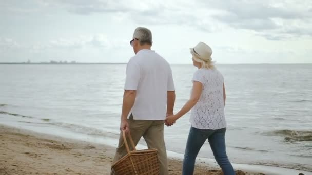Elderly woman and male pensioner moving along seaside.