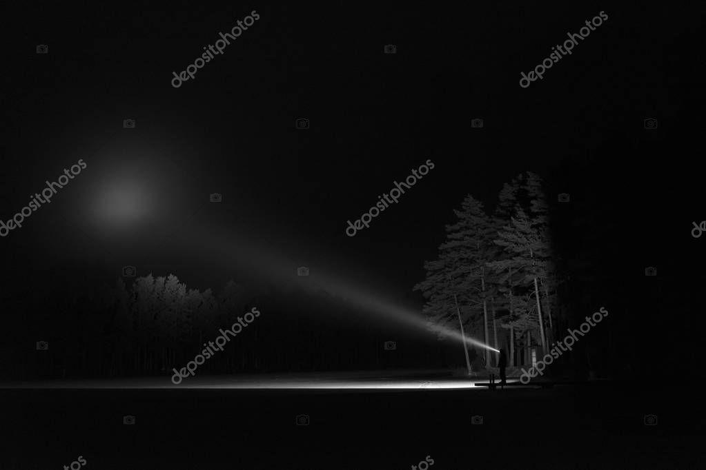 Man standing outdoors at night in tree alley shining with flashlight. Beautiful dark snowy winter night.