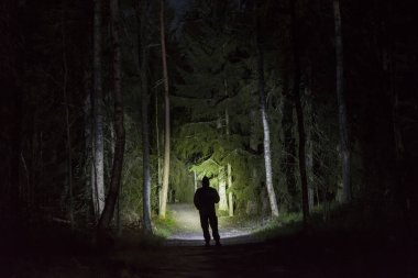 Man standing outdoors at night in tree alley shining with flashlight. Beautiful dark snowy winter night.