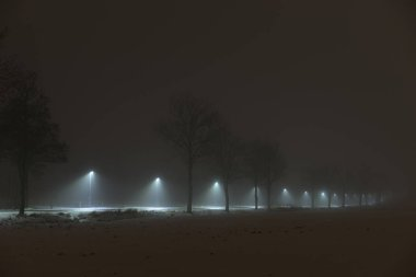 Foggy night in Sweden Scandinavia Europe. Beautiful, mystical and abstract photo of dark winter evening with mist in air. Calm, peaceful outdoors image with lights, lamps and road.