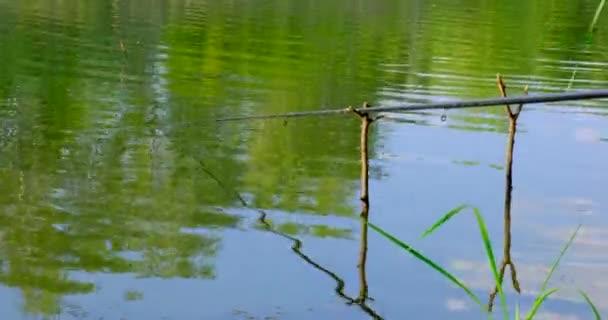 Horgászbot és úszó a folyóban a nyári napon. Horgászfelszerelés bobberrel és ketreccel a kifogott halak számára. Természetvédelmi háttér