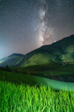 Paddy rice terraces with stars and milky way, green agricultural fields in countryside or rural area of Mu Cang Chai, Yen Bai, mountain hills valley at night in Asia, Vietnam. Nature landscape. stock vector