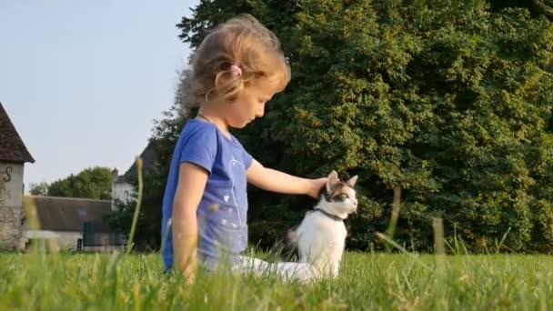 ein lockiges kleines Mädchen streichelt eine dreifarbige Katze. Familientag. Haustiere