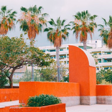 canary island. Tropical location. Travels