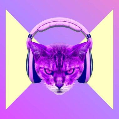 Contemporary art collage. Music concept. Aggressive cat DJ