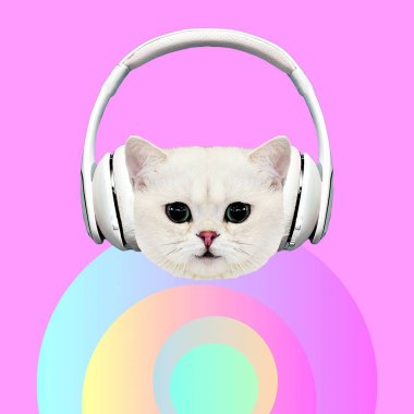 Contemporary art collage. Music concept. Funny Kitty DJ.  Pastel and pink vibes