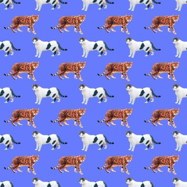 Seamless minimal  pattern. Cats lover. Use for t-shirt, greeting