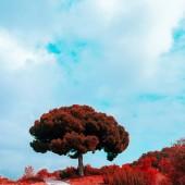 Přírody. Krajina. koncepce milovníka přírody. Španělsko