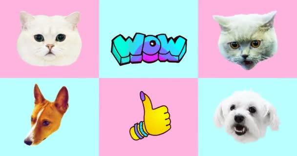 Animation gif set vorhanden. Lustige Tiere. Katzen- und Hundegesichter