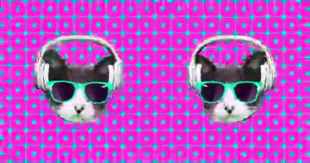 Minimales Animationsdesign. Lustige Dj Cat Musik Kopfhörer Vibes