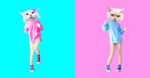 Animation minimale GIF-Kunst. Lustige Katzen
