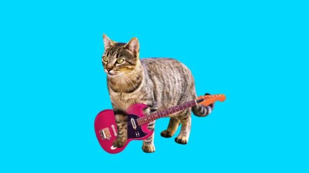Animation minimale GIF-Kunst. Kitty spielt Gitarre