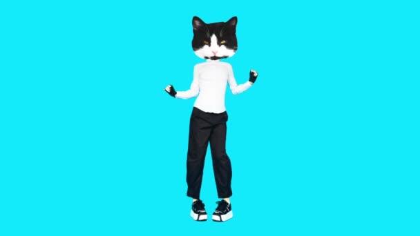Gif Animationsdesign. Kitty Büro Stil tanzen