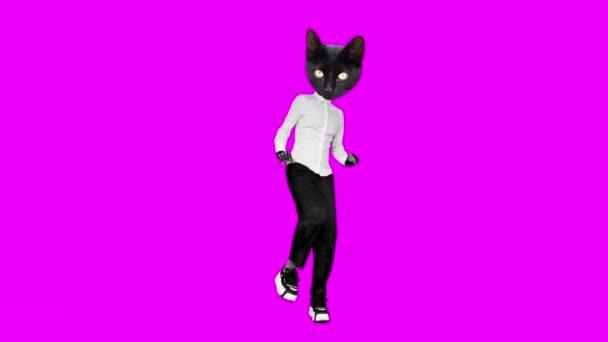 Gif Animationsdesign. Schwarze Kitty Bürostil tanzen auf rosa Hintergrund