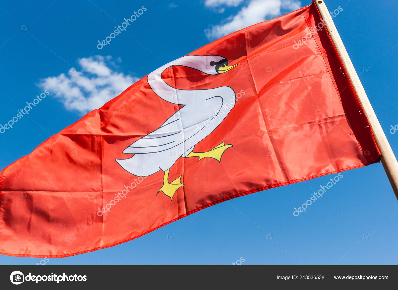 Knightly Flag Red Color Image White Goose Middle Flutter