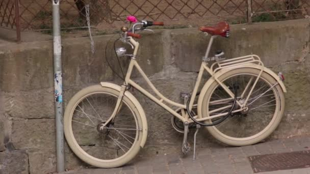The Vintage Retro Bike