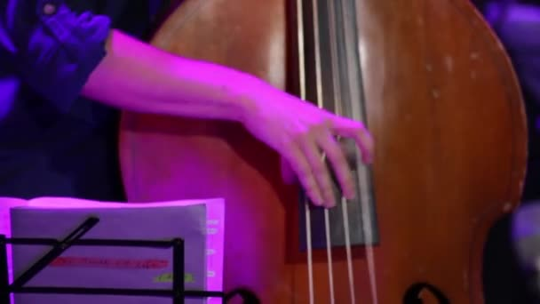Musica libro Man Play Double Bass
