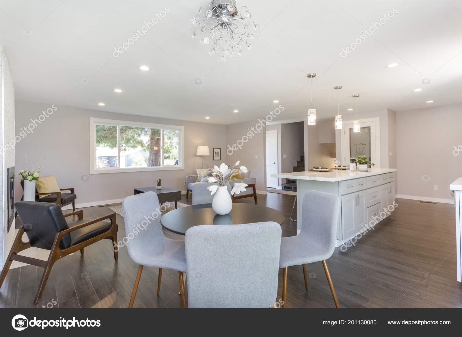 Interior Casa Moderna Con Plan Piso Abierto Vista Zona