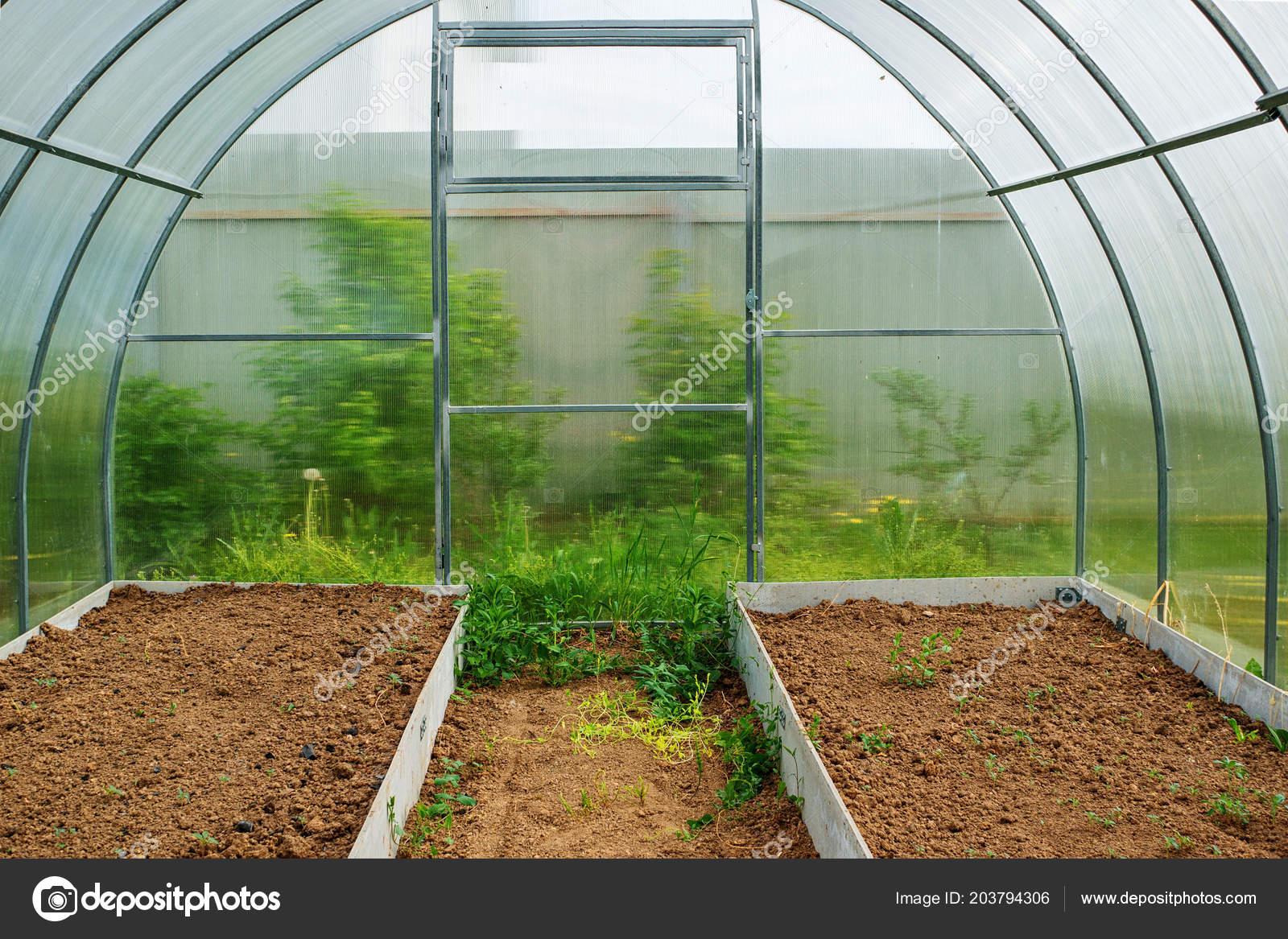 Cultiver des légumes dans une serre dans le pays. Haut jardin pour ...