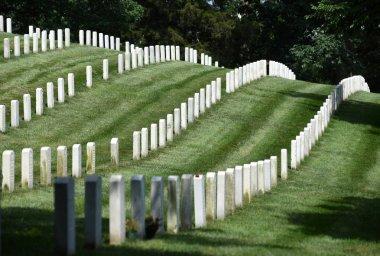 Washington, DC - June 01, 2018: Arlington National Cemetery. stock vector