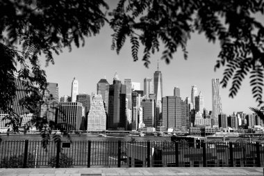 View on financial district in lower Manhattan from Brooklyn Bridge Park, New York.