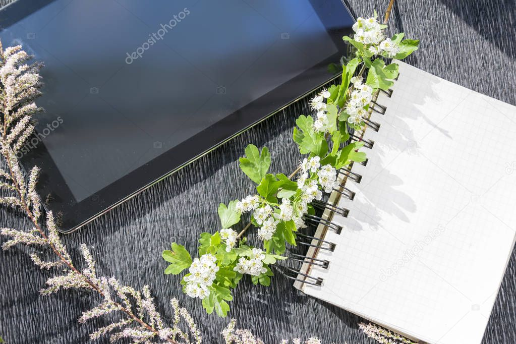 Tablet and notebook decorated by different plants