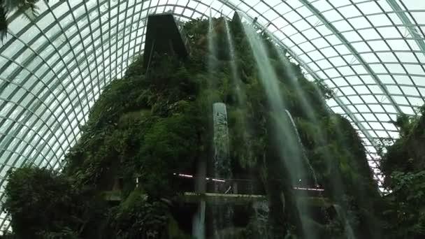 Botanická zahrada Singapur.