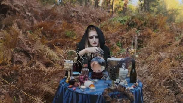 Halloween Image. Portrait Of Young Witch.