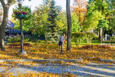 Taras Shevchenko Park (Green Building) is located opposite the main building of the Taras Shevchenko University of Kyiv, which is on the street. Vladimirsky in the city of Kiev. Has the status