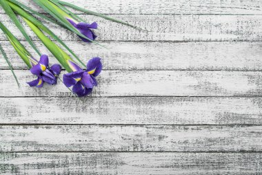 top view of beautiful iris flowers on grey wooden table