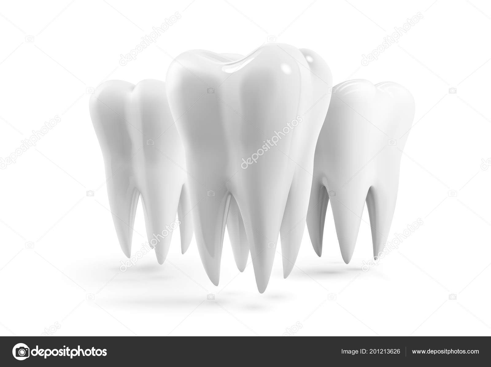 Realistic Vector Human Tooth Icon Design Template Tooth Isolated