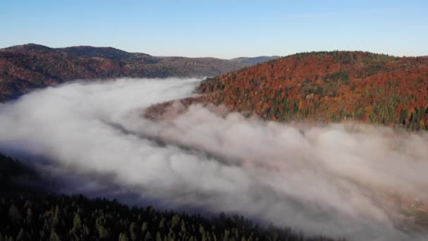 Aerial view of amazing landscape of Carpathian Mountains. Morning fog spreads over the river and envelopes the mountains and forests. Magical and colorful autumn in Carpathians, Ukraine