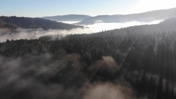 Foggy Autumn Morning in the Carpathian Mountains. Amazing sunrise beauty of the forests