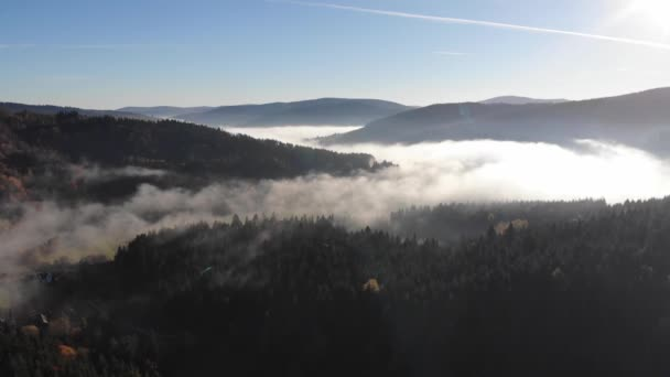 Amazing autumn landscape in Carpathians. Misty morning. Aerial view, fly forward
