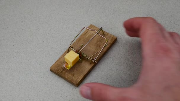 Mouse trap with piece of cheese