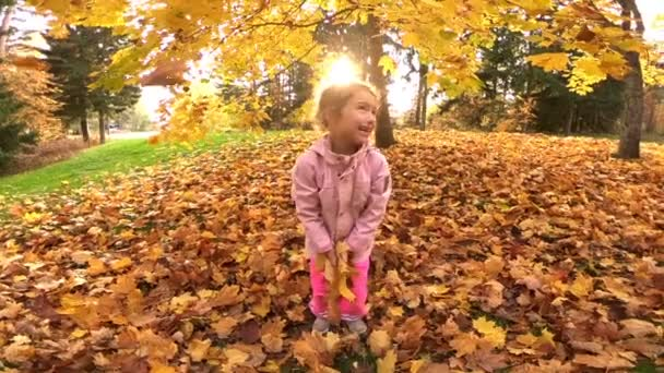 little laughing pretty girl throws yellow leaves in autumn park